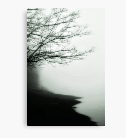 Forgetful Shores Canvas Print