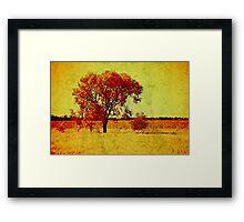 Golden Harmony  >> Framed Print