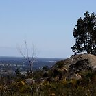 Perfect View from Perth Hills 2 by TeAnne
