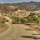 Bunyeroo Valley Finders Ranges  by Terry Everson
