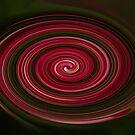Grevilia Swirl by Jason Scott