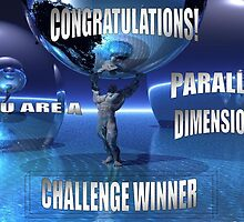 Parallel Dimensions Challenge by Tanya Newman