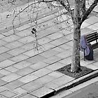 Waiting in Silence (best viewed Large) by Jen Waltmon