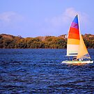 Sailing Home >> by JuliaWright