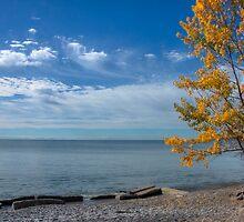 Across the Lake by Marilyn Cornwell