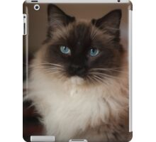 Sully Monster cat  iPad Case/Skin
