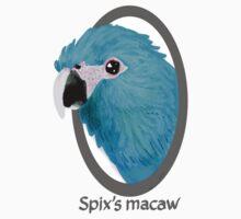 Spix's macaw Kids Clothes