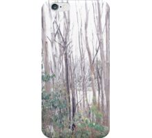 Trees and snow iPhone Case/Skin
