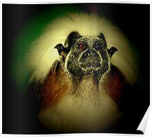 profile of a primate Poster