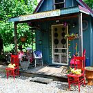 Garden Shed by Tracey Hampton
