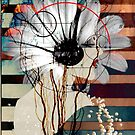 Flora by Susan Ringler