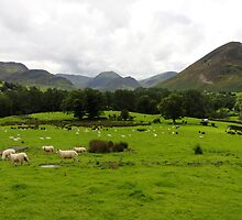 Rural Scene by Paul Bettison