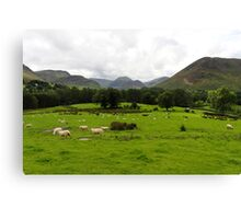Rural Scene Canvas Print