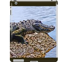 Florida Gator iPad Case/Skin