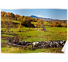 Farming in Vermont Poster