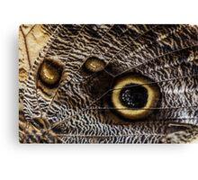 Macro Butterfly Wing Pattern Canvas Print