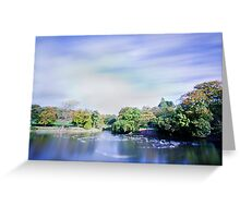 Pond in the park with ghostly gulls Greeting Card
