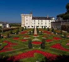 French Garden by Trevor Murphy
