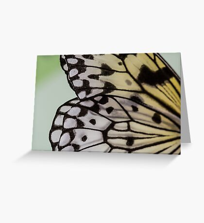 Macro Nymph Butterfly Wings Greeting Card