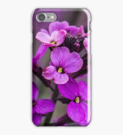 Macro Pink Flowers Square Photo iPhone Case/Skin