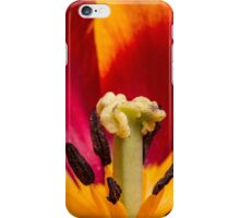 Macro Tulip in red and yellow iPhone Case/Skin