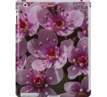 Macro Umbrella Plant iPad Case/Skin