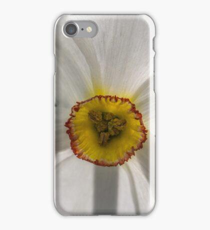 Macro white daffodil iPhone Case/Skin