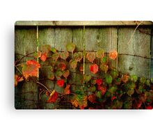 Fence Decoration ©  Canvas Print