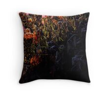 Minor of a passé beauty or... is it over? Throw Pillow