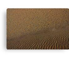 portmeirion's beach Canvas Print