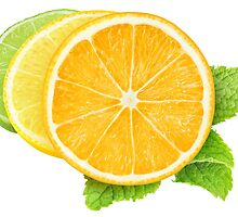 Colorful citrus fruits slices by 6hands