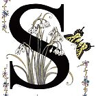 Snowdrops, Snowflakes and a Swallowtail by Constance Widen