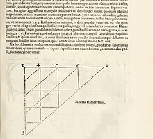 Famous Painter Parts Human Body Symmetry Four Books Geomety 1557 Albrecht Durer 0053 Transerence Scheme by wetdryvac
