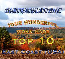top 10 challenge banner East Coast (USA) by vigor