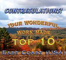 top 10 challenge banner East Coast (USA) by vigor