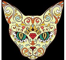 Calavera Cat Photographic Print