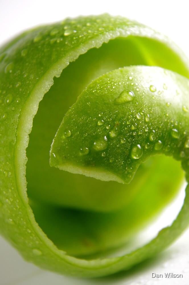Crispy Green Apple by Dan Wilson