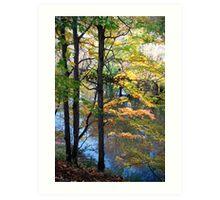 Autumnal Daydream Art Print
