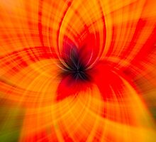 Giant Poppy Abstract by Nigel Jones