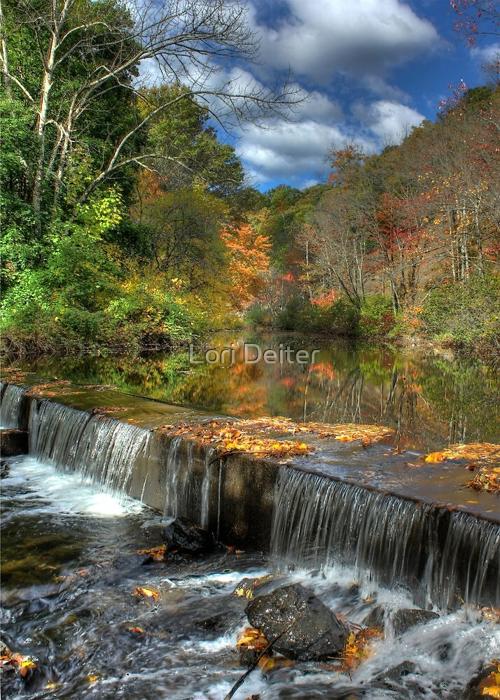 Overflowing with Beauty by Lori Deiter