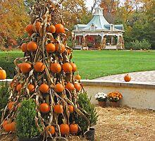 Thanksgiving Greetings by Monnie Ryan