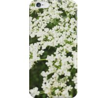 A walk with granny iPhone Case/Skin
