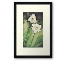 Dreamy Flowers Framed Print