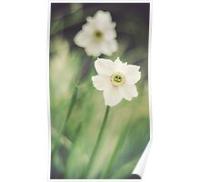 Dreamy Flowers Poster