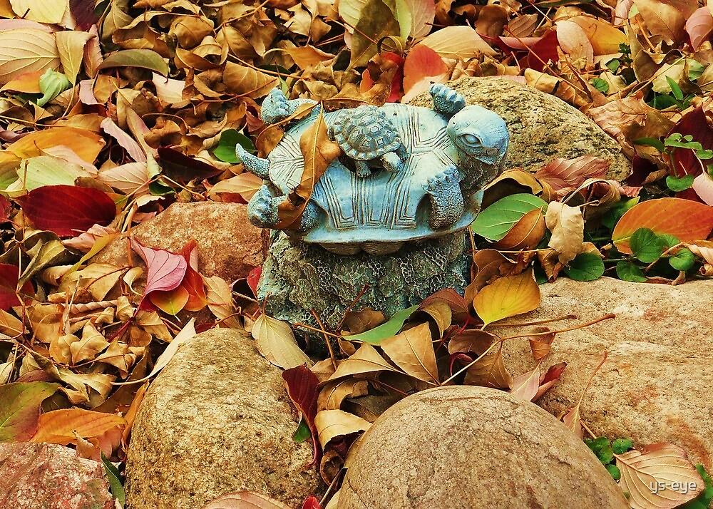Garden Turtles  by ys-eye