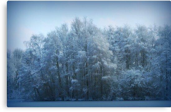 Frozen  by Yool