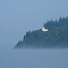 Long Eddy Point Lighthouse   by Stephen Stephen