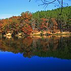 Autumn Lake by rtishner1