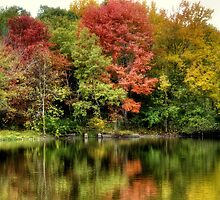 Autumn on the Pond by Monica M. Scanlan