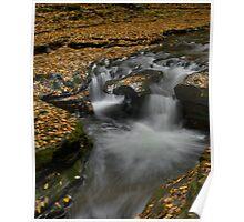 Autumnal Falls Poster